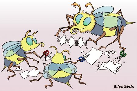 Bee Illustration by Eliza Stein