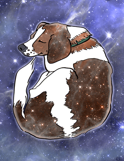 Space Beagle Illustration by Eliza Stein