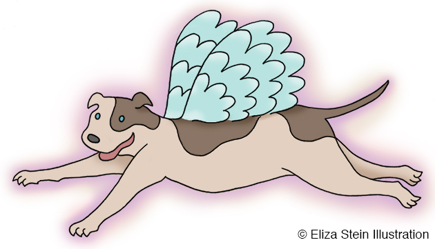 Pitbull Pegasus Illustration by Eliza Stein